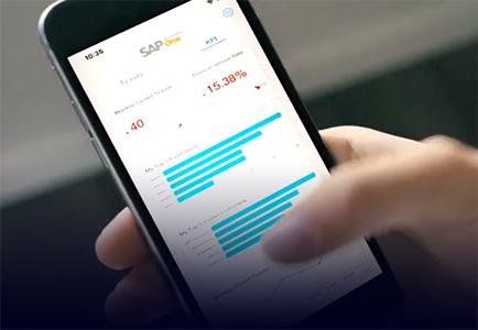 https://beta.avaniko.com/wp-content/uploads/2021/01/sap-business-one-explainer.jpg